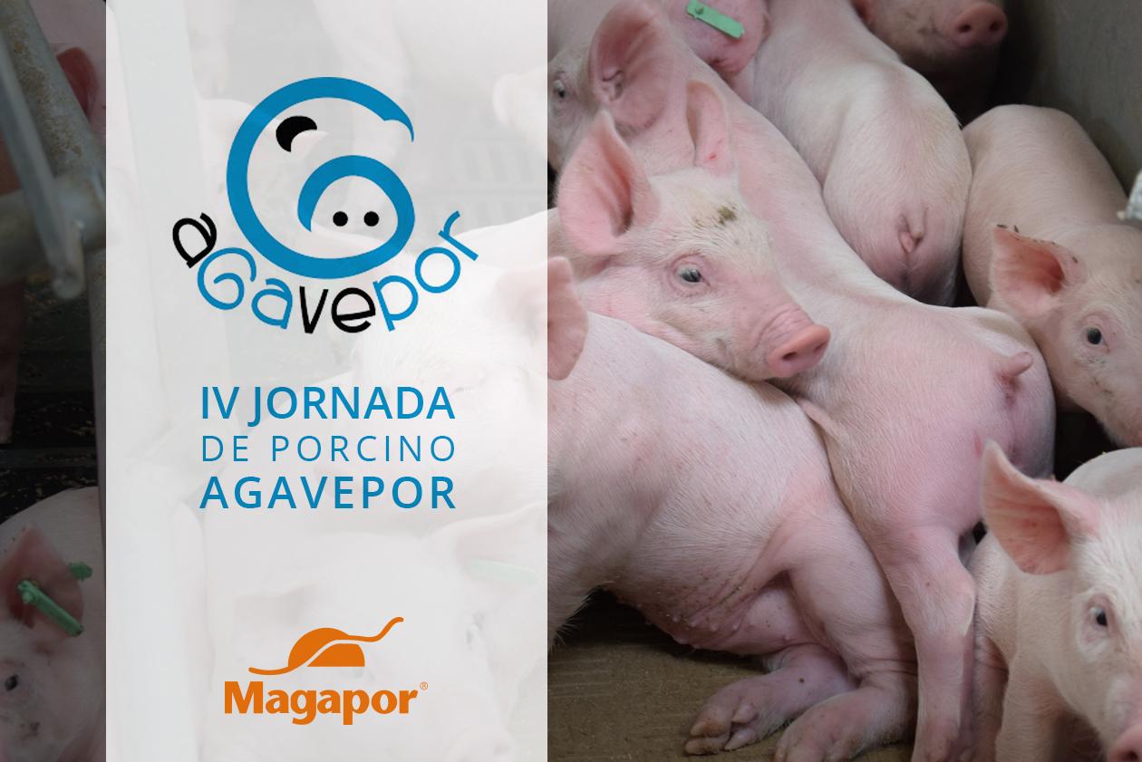 Magapor Agavepor 2018