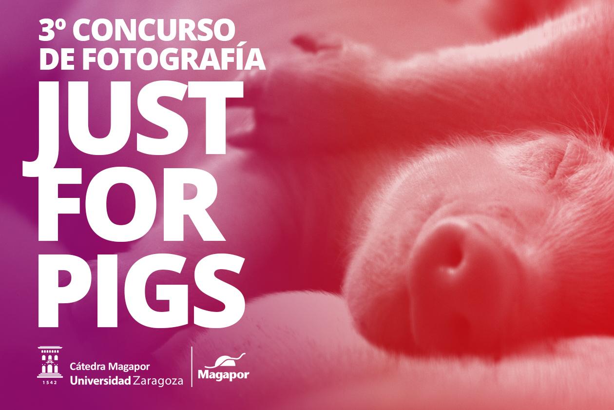 III Concurso Fotografia Magapor
