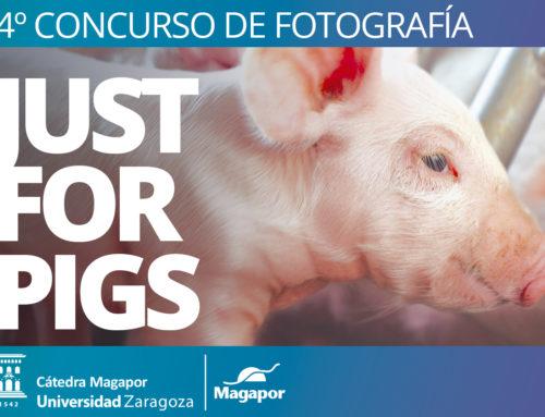 IV Concurso de Fotografía de Magapor
