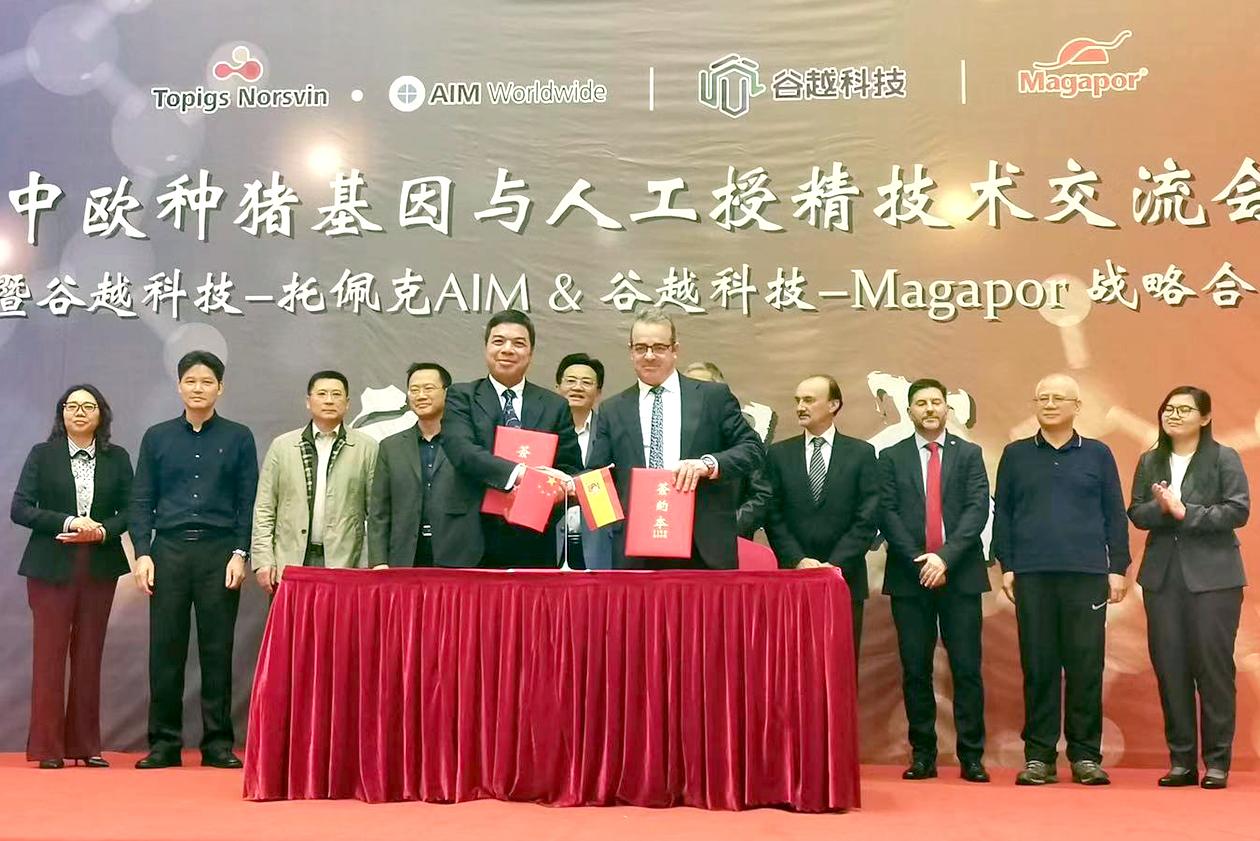 Magapor signing Guyue