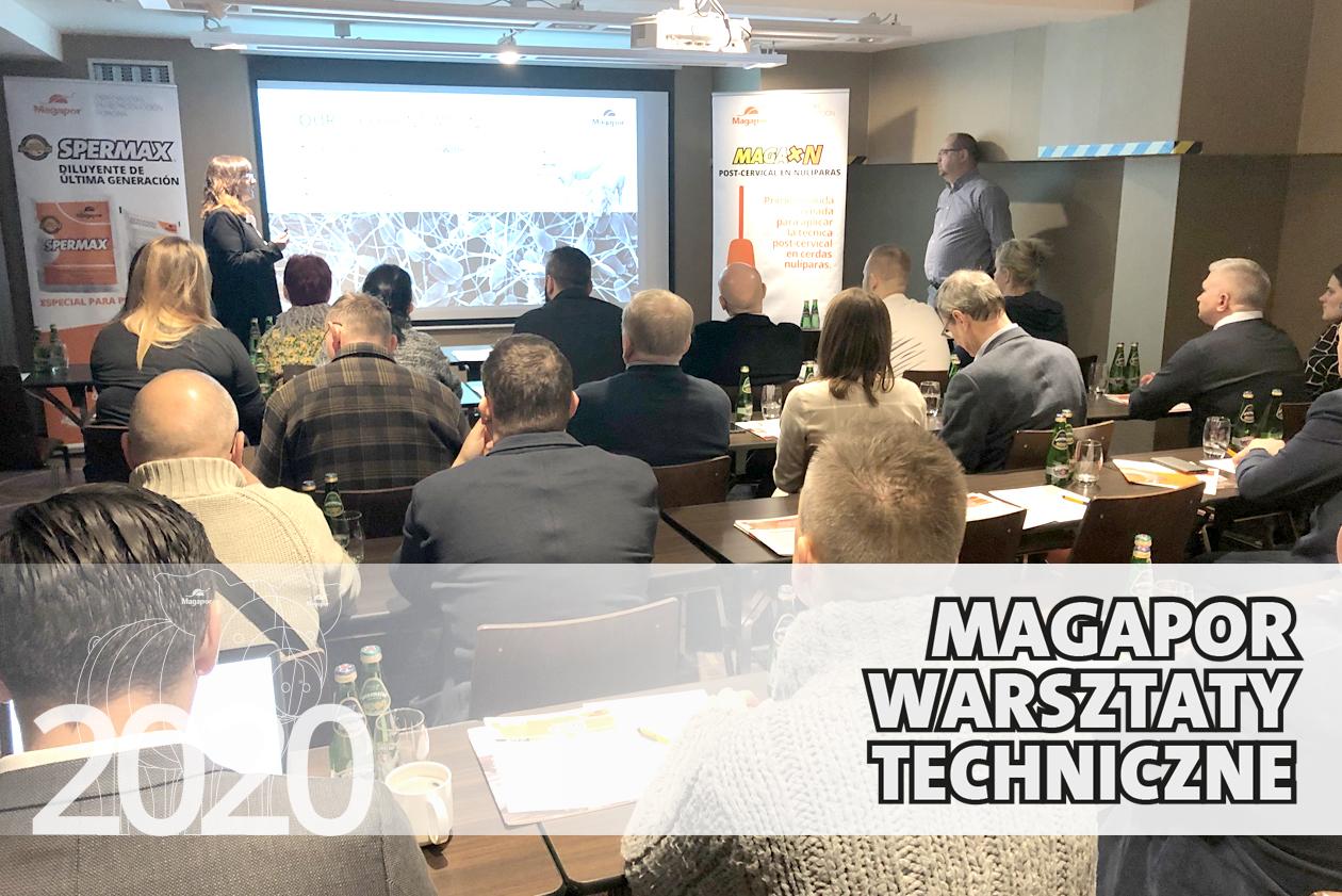 Poznan Technical workshop Magapor