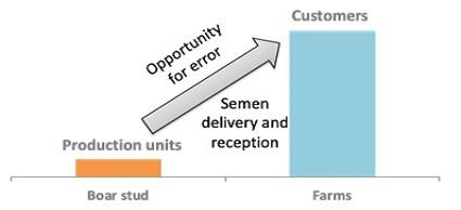 Opportunity for error during semen transport