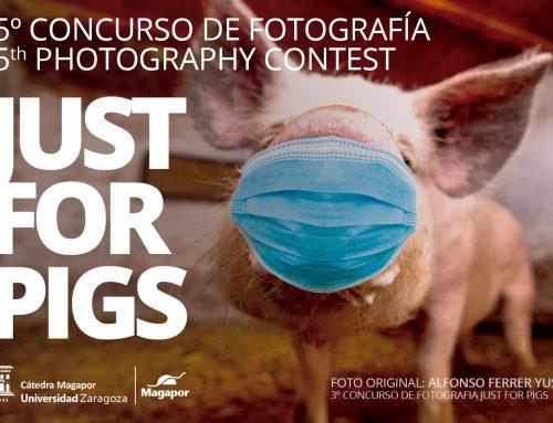 V CONCURSO DE FOTOGRAFÍA MAGAPOR