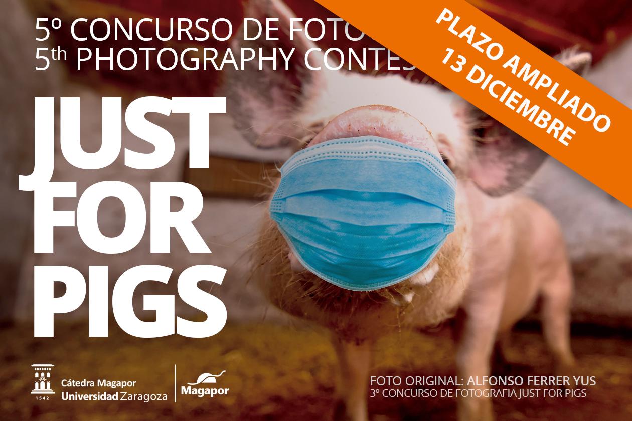 Ampliación V Concurso de Fotografía Magapor