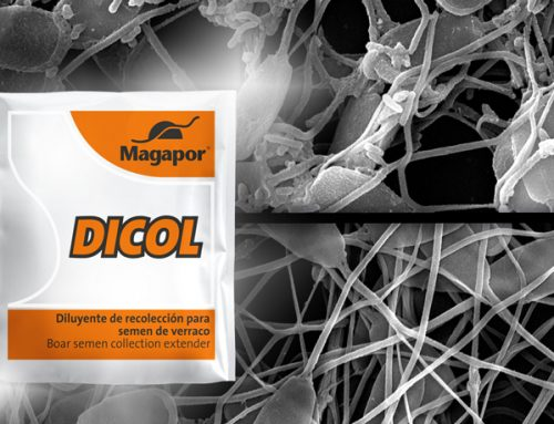 DICOL, solución para problemas de contaminación