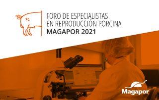 Foro Magapor 2021