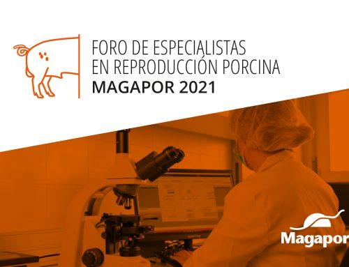 Magapor celebrará el Foro de Especialistas en Reproducción Porcina 2021