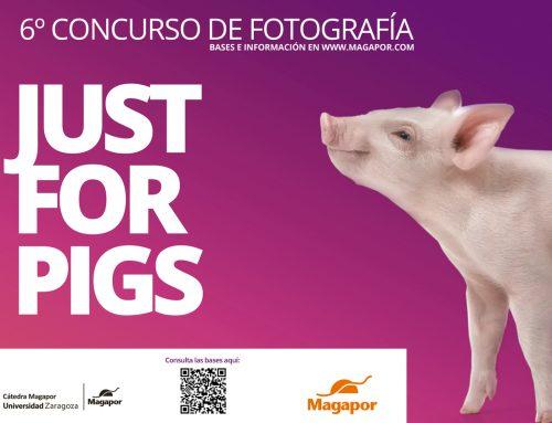 VI Concurso de fotografía Magapor