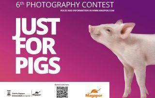 Magapor photography contest